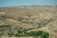 Dohuk and Sinjar Mountain  (88 of 267) (mharbour11) Tags: iraq erbil duhok hasansham babaga bahrka mcgowan harbour unhcr yazidi sinjar tigris mosul syria assyria nineveh debaga barzani dohuk mcgowen kurdistan idp