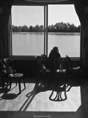 Viendo pasar un rio - Watching a river pass (ricardocarmonafdez) Tags: andalucía sevilla guadalquivir rio river agua water monocromo monochrome blackandwhite bw bn contraluz backlighting canon 60d riverscape ngc perspectiva perspective contrast contraste sol sun light sombras shadow shade