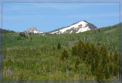 {Mount Naomi Wilderness/ Bear River Range - II.} (Wolverine09J ~ 1 Million + Views) Tags: utahwildlifeandwedding17 mountnaomiwilderness bearriverrange sceniclandscape loganbyway northernutah naturestyle