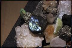 eARTh (zawaski) Tags: alberta beauty canada canmore naturallight zawaski©2017 ammonite rockymountains noflash love calgary ambientlight ammolite canonefs18200mmf3556is