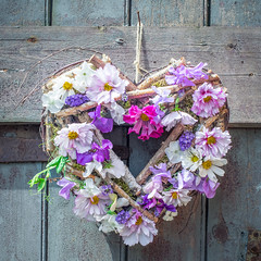 Summer Willow Heart (photoart33) Tags: willow heart love romance pretty pastel pink purple flowers stilllife cosmos roses sweetpeas moss lavender