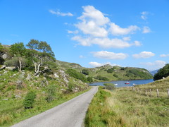 Road to Bracara, Lochaber, May 2017 (allanmaciver) Tags: bracara loch morar lochaber remote route trees single track road boats highlands scotland allanmaciver