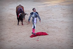 Desplante (aficion2012) Tags: istres francia france corrida bullfight bull toro toros taureau fundi elfundi juan pedro domecq tauromachie tauromaquia desplante matador torero toreo