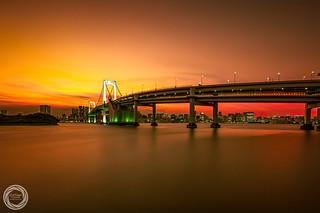 Golden Glow, Tokyo Rainbow Bridge