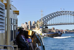 Working Harbour - Tug Switzer Bondi crosses the bow of Sydney Ferry MV Friendship in the shadow of the Sydney Harbour Bridge (john cowper) Tags: sydneyharbour darlingharbour sydneyharbourbridge sydneyferry tugboats switzerbondi photography friendship sydney newsouthwales workingboats
