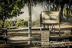 Incendio... (Gaditana93) Tags: incendio bosque pinar canteras puertoreal cáiz cádiz cadiz canon canon400d fuego humo naturaleza maríadelcarmendelgadomaline gaditana93 eos españa andalucía