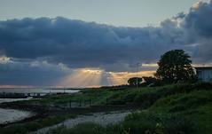 July evening in Hittarp (frankmh) Tags: landscape hittarp helsingborg skåne sweden outdoor sky