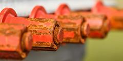 Tight (Robby van Moor) Tags: tight bolt depthoffield sharp rost