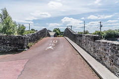 THIS IS KNOWN AS PARK ROAD BRIDGE [LOCATED IN LIMERICK]-130355 (infomatique) Tags: canalbridge modified1960 1800 oldbridge humpbackbridge limerick williammurphy infomatique fotonique canalsofireland parkroadbridge