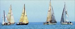 Sailing (Daryll90ca) Tags: sailing sailboat ontario canada ontariocanada