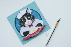 Paper Cut Pet Portrait by Kathryn Willis -Trouble (all things paper) Tags: papercutting kathrynwillispaper petportrait customportrait paperart