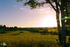 Derrière chez moi (Julien Le Berre) Tags: nuages canon 70d prairie beauté paisible france laval vert bleu coucher de soleil lumière sunset sunshine