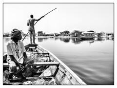Caché dans les palétuviers (benoitalluin) Tags: delta marlodj pirogue noiretblanc fleuve voyage travel gray people afrique sinesaloum sénégal feelingemotions