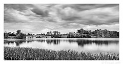 Capability Slowed Down (don't count the pixels) Tags: blenheimpalace blenheim woodstock oxfordshire longexposure 10stopfilter water bridge blackandwhite monochrome silverefexpro landscape bwndfilters ngc