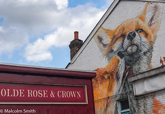 Walthamstow  Foxes (M C Smith) Tags: wall foxes sign pentax k3 red orange white chimney clouds blue sky window