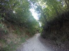 (Matteo Bimonte) Tags: francigena viafrancigena tuscany toscana pellegrino