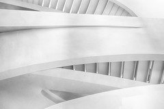 """""""Linear Melody"""" (Photography by Sharon Farrell) Tags: stairs staircases staircase stairscape stairporn spiralstaircase spiralstaircases steps stepsandstairs spiral abstract abstractarchitecture abstractphotography abstracts spiralabstract blackandwhite blackwhite blackandwhiteabstract blackwhiteabstract noiretblanc monochrome architecture newyorkarchitecture armani giorgioarmani armanistaircase giorgioarmaniboutique 717fifthavenue 7175thavenue fifthavenue newyork newyorknewyork newyorkcity manhattan manhattannewyork"""