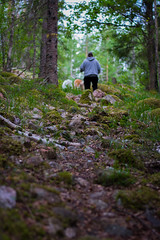 Where are we going? (JimmyBrandt) Tags: trail road forest trees lost sweden sverige nikon d7100