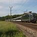 CFF Re 420 161 avec un train de supporters à Gollion