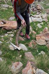 DSC08938.jpg (Henri Eccher) Tags: potd:country=fr italie arbolle pointegarin montagne alpinisme cogne