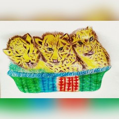 #my #artwork #baby #tiger #pencil #colour #pink #white #green #yellow #black #red..☺ (laxmideep) Tags: colour red pink black yellow tiger green pencil baby white artwork esala carmen keshav nitin