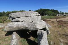 098 Carnac - Alignements de Kermario (Photos et Voyages) Tags: carnac morbihan bretagne alignements kermario menhir
