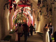 Floraart exhibition underground tunnel9