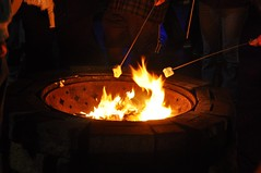 28 Toasting Marshmallows (megatti) Tags: buckscounty campfire fire marshmallow pa pennsylvania roasting shadybrookfarm yardley