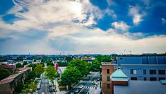 2017.07.02 DC People and Places, Washington, DC USA 7272