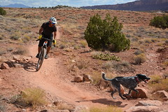 A man and his dog enjoy a ride on the Bar M Trails (BLMUtah) Tags: mountain biking mtnbiking moab blm bureauoflandmanagement utah riding outdoors nature explore play switchbacks trails outerbike