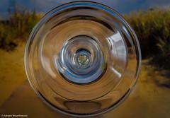 190/365 - Macro Monday - Bottom Up (J.Weyerhäuser) Tags: bottomup macromonday hmm weinglas wineglas glas cup
