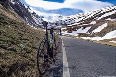 _umbrailpass (l--o-o--kin thru) Tags: umbrailpass giro schnee alpen alps