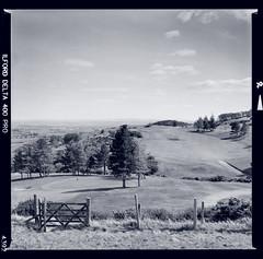 Bronica SQ-A-024-006 (michal kusz) Tags: bronica sqa zenzanon 80mm ilford delta 400 pro ddx epson v600 squere bw blackandwhite toned medium format 6x6 scotland monochrome monochromatic mountain field golf course pentlands hills