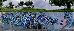 Artist: Wuam (pharoahsax) Tags: graffiti heidelberg hd pmbvw bw baden württemberg süden deutschland kunst art streetart street urban urbanart paint graff wall germany artist legal mural painter painting peinture spraycan spray writer writing artwork tag tags worldgetcolors world get colors wuam