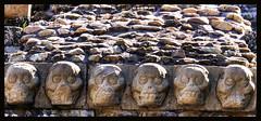 Templo 16 / Temple 16 (drlopezfranco) Tags: honduras copán ruins ruinas maya mayas mayan skulls craneos calaveras 6 six seis archaelogy arqueología old antiguo