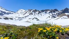 Schrecksee im Allgäu (johannesotte84) Tags: see schreck allgäu wandern schnee berge alpen blumen gipfel hiking snow relx relax calm otte canon 6d 17mm