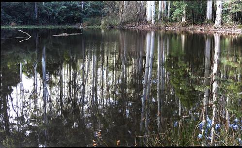 The beautiful and reflective Sanitorium Lake