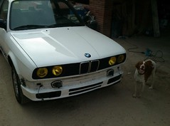 Repairing bumpers e30 post (quimserra1) Tags: iphone4 flickr photo dog black e30 bmw