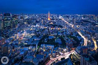 Tokyo in Blue Twilight