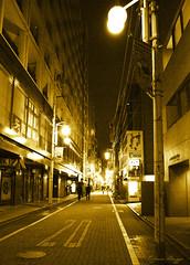 Golden Tokyo night (DameBoudicca) Tags: tokyo tokio 東京 japan nippon nihon 日本 japón japon giappone shiba 芝 東京都港区 night nacht nuit notte noche 夜 street gata strase calle rue strada 道