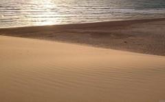Golden sand (KOSTAS PILOT) Tags: greece peloponese achaia summer summertime sunset sand beach beachslandscapes coast sea waves goldenlight goldenhour dune lines sony sonyz2 xperia kalogriabeach ελλάδα πελοπόννησοσ αχαιασ παραλια παραλιακαλόγριασ καλοκαίρι ηλιοβασίλεμα χρυσηωρα χρυσοφωσ αμμοσ αμμολοφοσ θαλασσα ακτη κυματα φωσ goldenfields landscape goldensand strofiliasforest δασοσστροφυλιασ