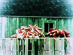 Canadian Buoys (photo fiddler) Tags: buoys buoyant wharf peggyscove redandwhite june 2017