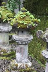IMG_2638 (normafincher) Tags: japan nikko nikkonationalpark