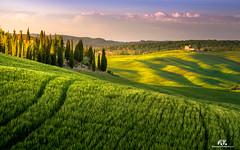 Val d'Orcia (Abulafia82) Tags: pentax pentaxk5 k5 2017 abulafia italia italy toscana tuscany valdorcia orcia valley valle siena pienza sanquiricodorcia campagna countryside paesaggio paesaggi landscapes landscape