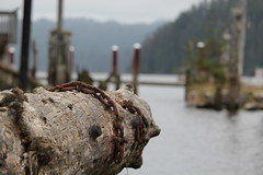 The Florence Waterfront (dsgetch) Tags: florenceoregon florence oregon oregoncoast siuslaw siuslawriver river waterfront log chain bokeh depthoffield dof bigchain perspective cascadia pacificnorthwest pnw pnwlife centraloregoncoast oregonrivers