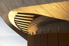 Crown (mimo b. rokket) Tags: abstract abstrakt architektur architecture abstractarchitecture abstraktearchitektur curves schatten shadow linien lines geometrie geometry berlin deutschland germany hausderkulturen hdk schwangereauster