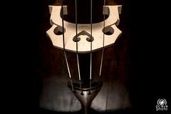Teschio del Violino (andrea.prave) Tags: cremona italia italy museo violino stradivari museum musée 博物館 музей متحف 博物馆 violin violín violon violine バイオリン скрипка كمان 小提琴 skull teschio