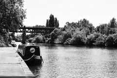 DSC_0206 copy (josierustle) Tags: worcester worcestershire summer nature water river sunshine blackandwhite monochrome