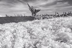 Alien seaweed, Felixstowe (Sean Hartwell Photography) Tags: felixstowe suffolk ir infrared monochrome blackandwhite docks port harbour cranes seaweed otherworldly