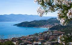 Lerici Vista 2 (TMurrayPhoto) Tags: scenery beach paradise flowers terracotta lerici italy italian cove highcolor